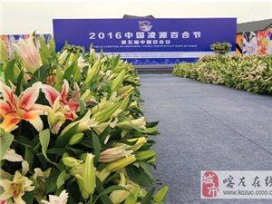 2016中国凌源百合节暨第五届中国 百合日盛大开幕 开幕式