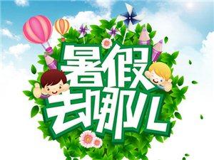 新县网第一季:宝贝、暑假去哪儿