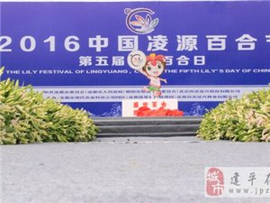 2016中国凌源百合节暨第五届中国