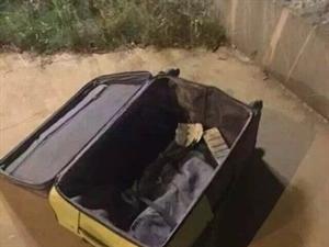 男子性侵女子后迷晕全裸装行礼箱欲丢弃,被发现后逃入河中