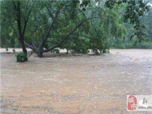 新县遭遇十年来罕见暴雨,一夜之间山城变水城。