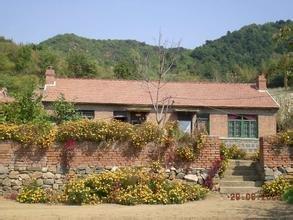 散文:我的小院我的村