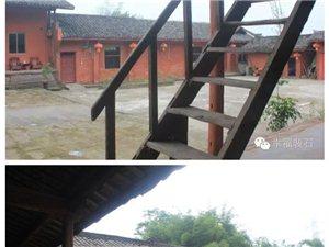 百年老宅话沧桑     荷花映衬下的培农村