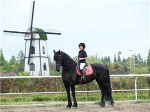 【推荐】成都青城马术俱乐部,骑马休闲,照相的好去处。