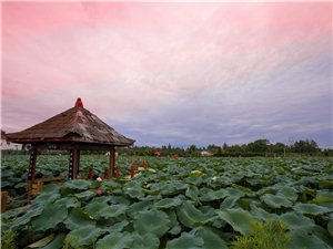 崇州桤泉湿地公园