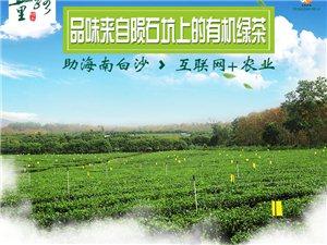 海南第一款淘����I的茶――白沙五里路有�C�G茶明天就要上�啦~