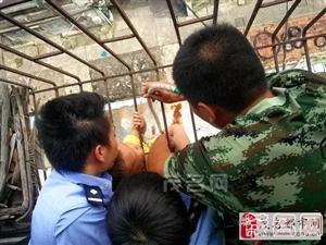 茂名光华路某住宅区一名小孩被卡在7楼的防盗网上,惊险万分!
