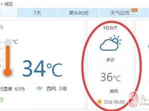 茂名这城市简直任性,今天一言不合就是36°!