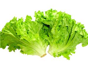 最补水的果蔬明星 个个含水量90%以上食品