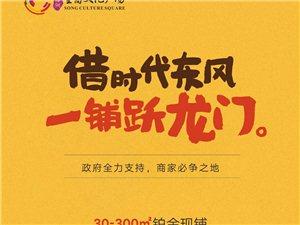 【绿洲・望嵩文化广场】借时代东风,一铺跃龙门