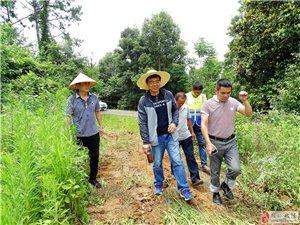 世界自然基金会长江项目首席科学家雷刚教授来金湖指导工作