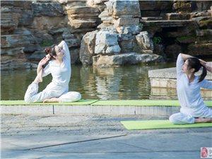 柔美――瑜伽的魅力