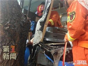 雨天路滑大巴车撞树上六人被困 消防紧急救援
