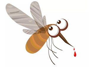 这个夏天,防蚊有绝招