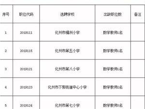 化州市城区小学教师还有12个空缺职位!不要错过了...