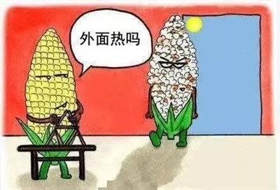 """最高�刂北�40℃!�鏊�""""�W退"""",河南桑拿天卷土重��"""
