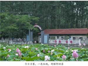 光州���:�S湖��S湖情�S湖景,美如��