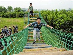 高空挑战拓展课程