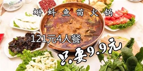 9.9元抢购123元鱼苗火锅4人餐