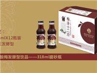 梅萊芬酸梅發酵型飲品--318ml-磨砂瓶專區