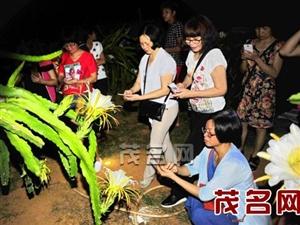 茂名推动特色生态乡村旅游发展
