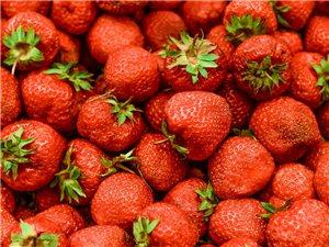 草莓竟然能减肥!19个水果的真相让襄阳的你惊掉下巴!