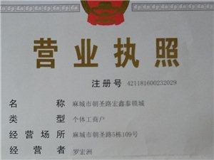 麻城宏鑫泰開鎖修鎖換鎖,指紋鎖,汽車鎖,防盜門鎖等