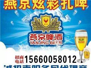 燕京炫彩扎啤,县级代理零加盟