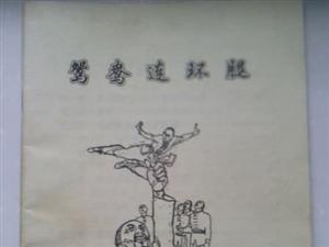鸳鸯连环腿武功书籍