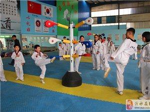 沂水云博跆拳道俱乐部超大训练场地1000平免费学习