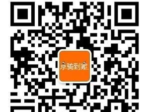 北京京骑到家电动车