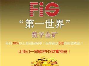FIS数字金矿为什么吸引了无数投资者?