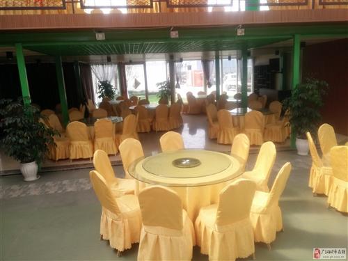 酒店餐廳轉盤大圓桌座椅配套(1+10)