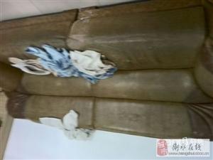 香港利达牛皮沙发