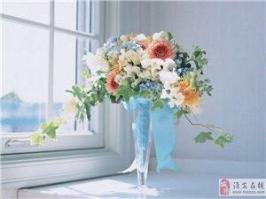學花束設計到淮安哪里培訓,學完插花技能可以開店嗎