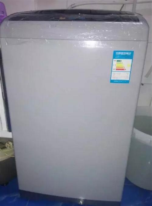 美的全自動洗衣機6.5公斤
