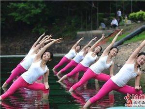 英語輔導 瑜伽