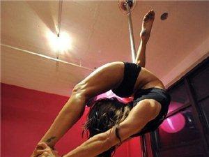 ios 怎么下载亚博体育专业钢管舞 酒吧领舞培训真正做到包教包会包分配