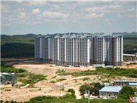 儋州城投·林海风情