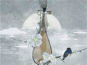 爱古典乐器,热爱琵琶欢迎来找我