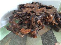 柿子木树根茶桌,感兴趣的电话联系!