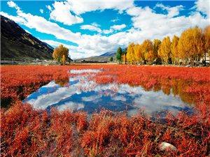 稻城亞丁,夢中的凈土,只有遠方和詩