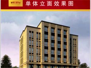 东丰县商业中心地段康城汇财中心整体出租