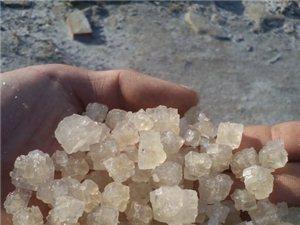 優質工業鹽供應日曬鹽 水洗烘干鹽