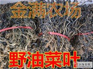 常年大量供应干芝麻叶、干萝卜叶、干洋槐花、干豆角