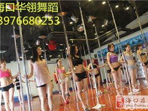 暑期舞蹈班招生了 日韩欧美风格形体培训舞蹈