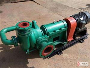 压滤机专用入料泵A阜城压滤机专用入料泵厂家