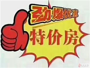 �A宇新港�秤斜究蛇^�裟苜J款7700