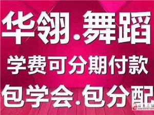 信豐華翎舞蹈國際連鎖,專業成人零基礎舞蹈培訓機構