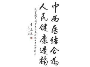 原中共中央政治局常委、国务院副总理李岚清